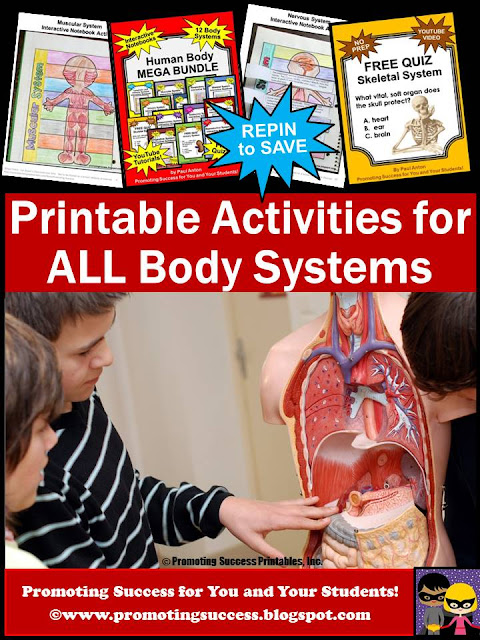 Promoting Success: Human Body Systems Quiz, Interactive