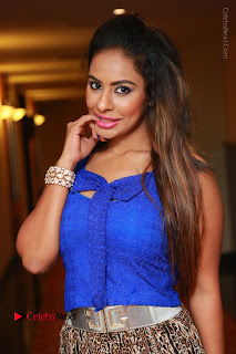 Telugu Actress Srilekha Reddy Latest HD Pos in Sleeveless Blue Top at Muse Art Gallery  0019.JPG
