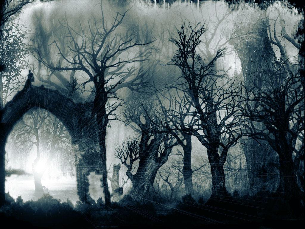 Los Bosques Del Terror Te Interesa Saber