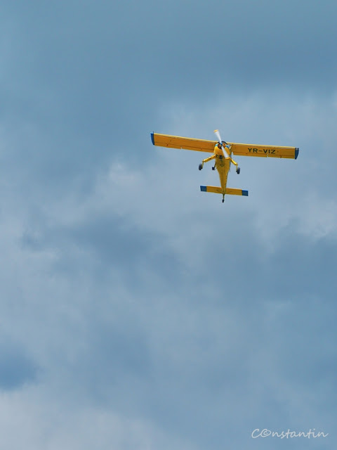 """Avioane - Elicea care """"stã"""" a unui avion care pluteste nu """"dã"""" foarte bine - blog FOTO-IDEEA"""