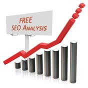 Cara Agar Blog 100% SEO di SEO Analysis Tool