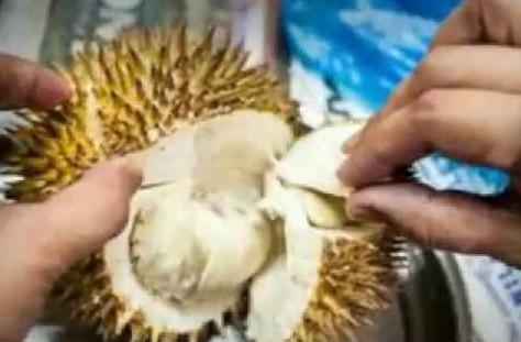 Obat Bagaimana Cara Menghilangkan Bau Mulut Setelah Makan Jengkol, Pete Dan Durian