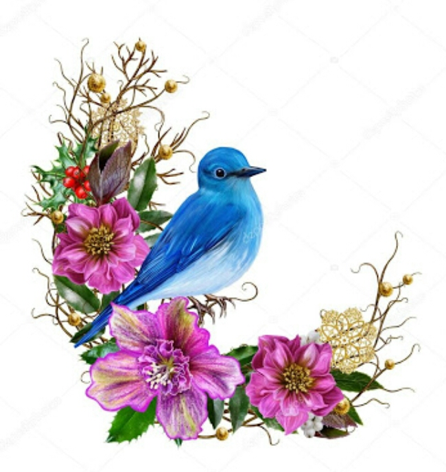 Ağaç Dalına Konmuş Kuş Resimleri Tabloları