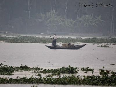 River Kocha