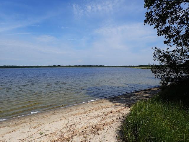 Jezioro na Pojezierzu Szackim (czerwiec 2017)