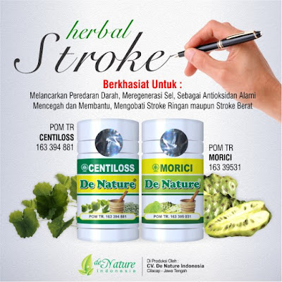 Pengobatan Herbal Stroke Ringan