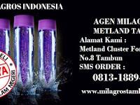 Milagros Bekasi SMS Order 0813-1889-2488