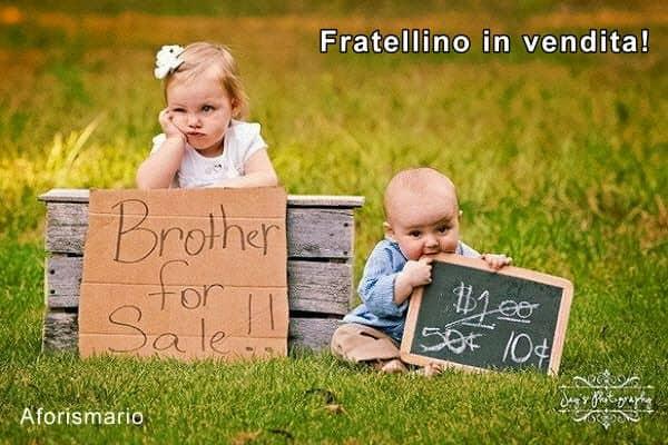frasi simpatiche fratelli