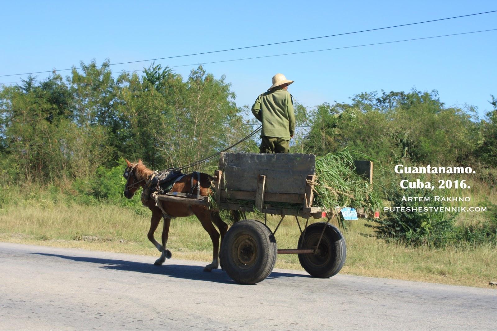 Гужевой транспорт на Кубе