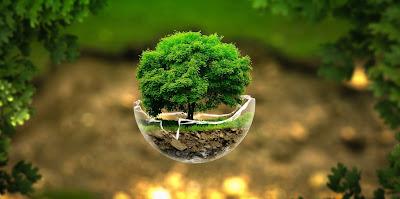 O termo consciência ambiental está sempre presente em nossas vidas. Ele está na TV, nas reuniões de cúpula dos grandes líderes internacionais, em reuniões de bairro, associações, condomínio... enfim, a coletividade se envolve, cada vez mais envolvida com a forma com que impactamos o ambiente. O tema se torna mais presente e obrigatório a medida que percebemos como esse impacto retorna a nós.