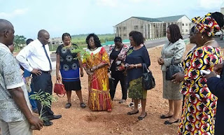 IMSU Vice-Chancellor Plants Tree In Support Of Campus Green Initiative