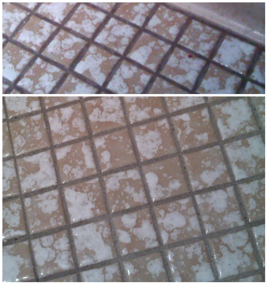 Occupation Housewife Cleaning Grout On Small Bathroom