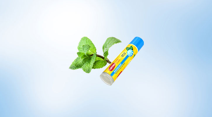 Carmex Daily Care Winter Mint Flavor - Global Distributors