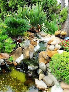 Arranjo de Jardim - Rossatto Garden Center