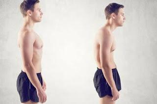 postur tubuh
