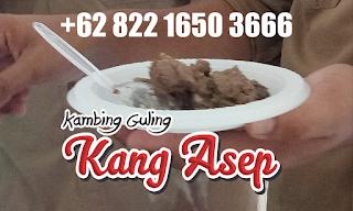 supplier Kambing Guling
