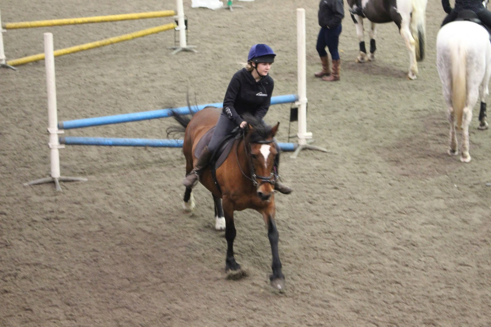 Stan Calvert Equestrian Competition