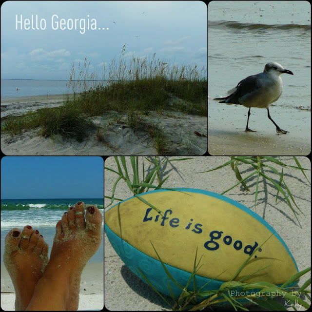 A Pristine Beach Warm Tropical Breezes And The Love Of: Living Life In PA: Quotography