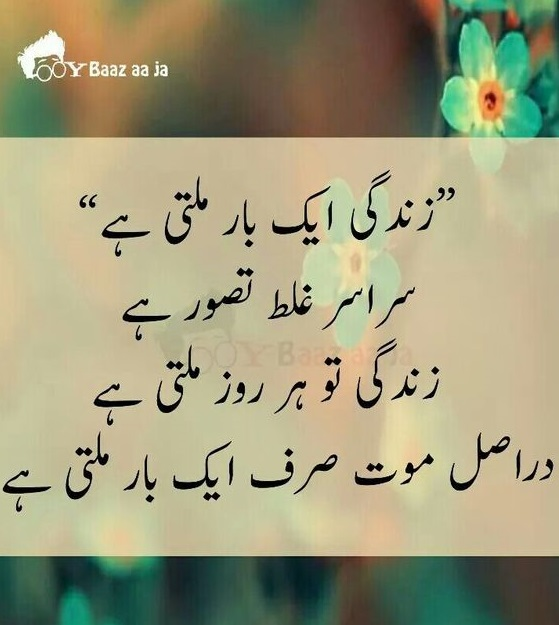 Beautiful Life Urdu With Awesome Quotes On Zindagi