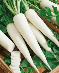 radish(mooli) health benefits in urdu