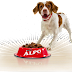Is Alpo Dog Food Safe and Nutritious?