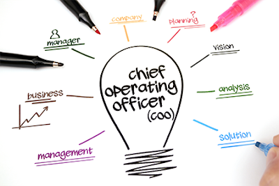Chief Operating Officer Job Search