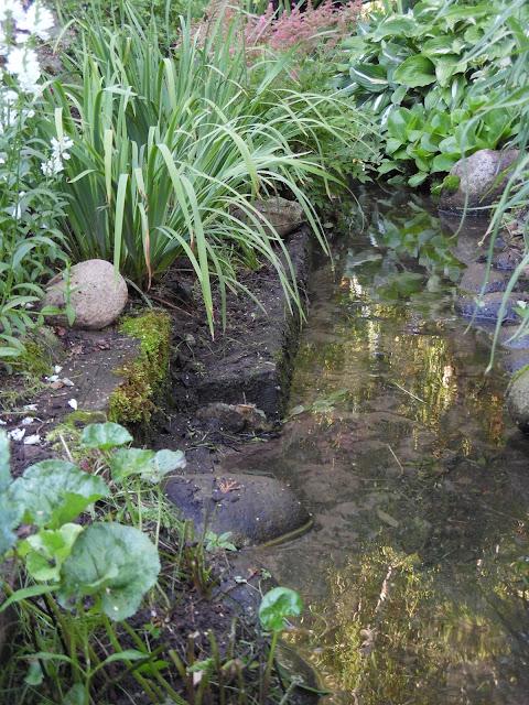 nad strumieniem, woda w ogrodzie