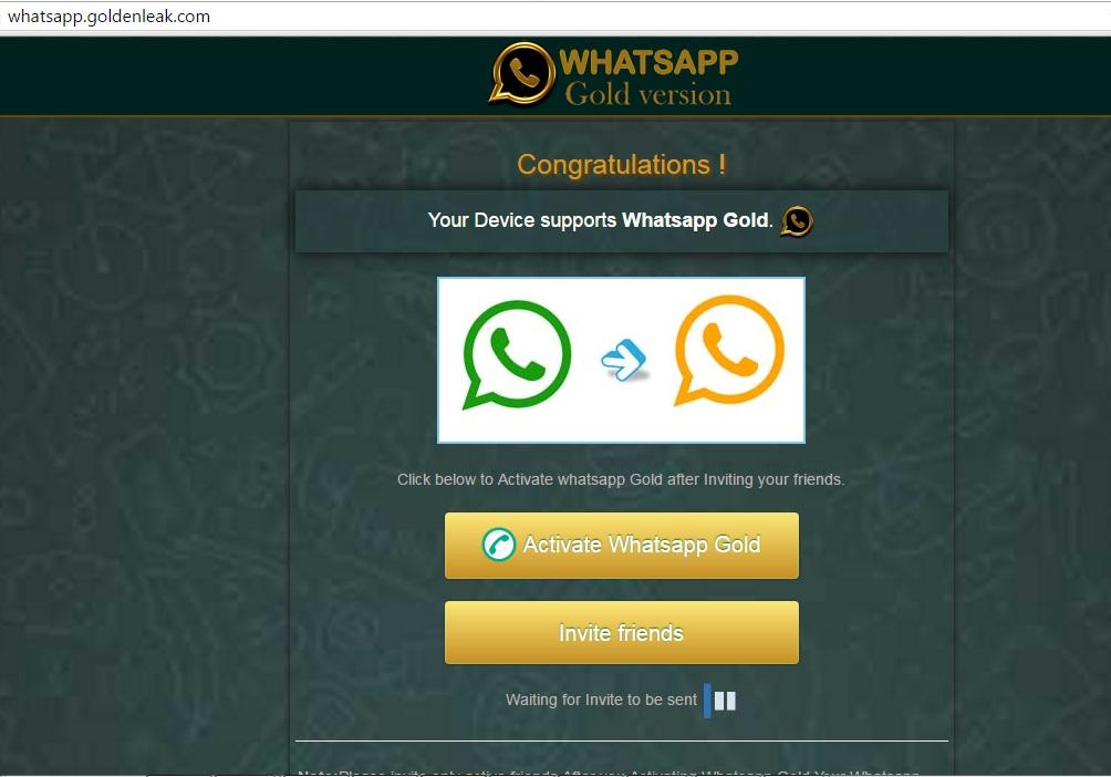 whatsapp vip