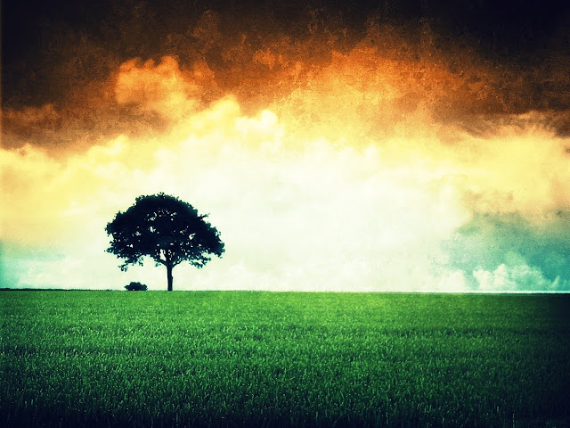 Latest Independence Day HD Wallpaper