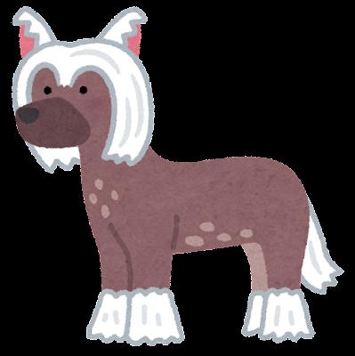 チャイニーズクレステッドドッグのイラスト(ヘアレス)