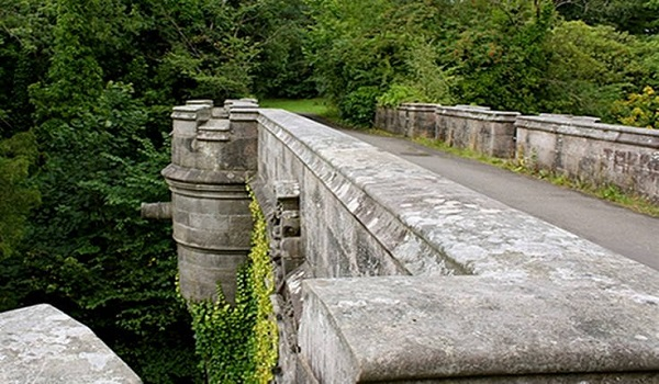 Γέφυρα - μυστήριο κάνει τα σκυλιά να βουτούν στο κενό