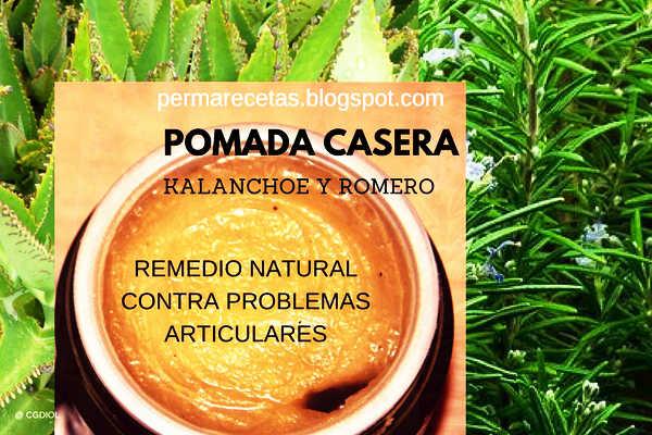 Pomada casera de kalanchoe y romero Remedio Natural para Problemas Articulares