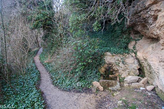 Fuente del Tejo en las lagunas de cañada del Hoyo.Cuenca