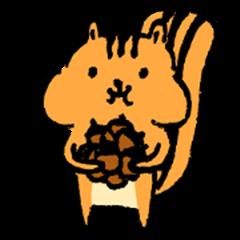 little squirrel-1