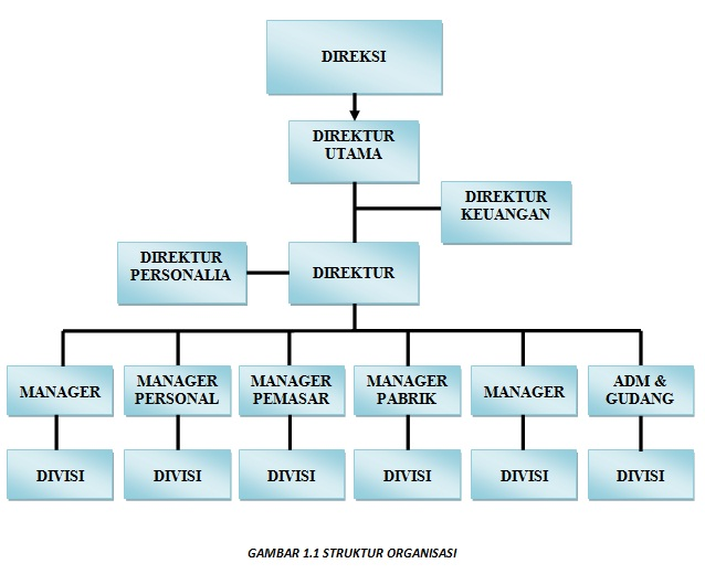Rizki Priyangga Struktur Organisasi Perusahaan