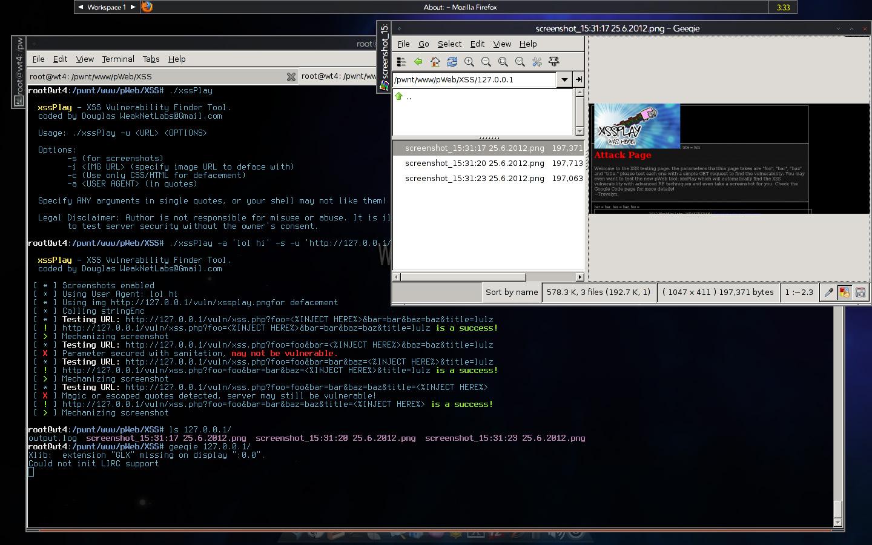 pWeb Suite XSSplay Image