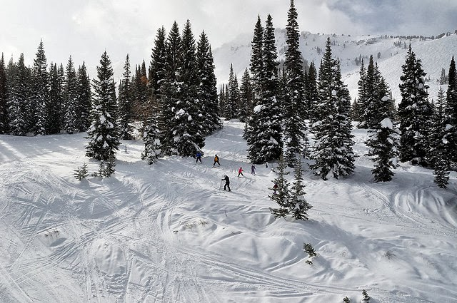 Alta, Utah - The Best 12 Ski Resorts in North America