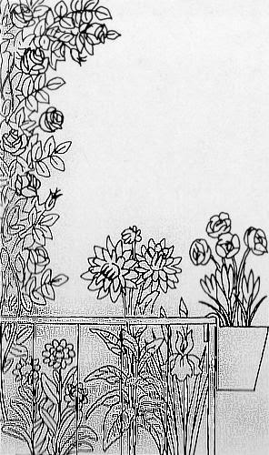 Piante e fiori il balcone tutto bianco fiori per chi for Tutto per il balcone