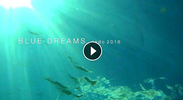Blue Dreams Indo 2016