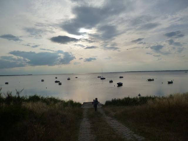 Gastbeitrag: Meine drei liebsten Orte an der Ostsee. Tipps und Empfehlungen für Ausfugs- und Urlaubsziele. Hier: Natur auf Ummanz