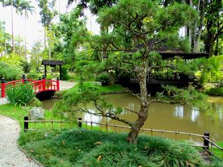 Lago e Ponte do Jardim Japonês, no Jardim Botânico do Rio de Janeiro