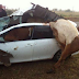 Rouge driver crashes into 9 cows killing them instantly then escapes on foot (Photos)