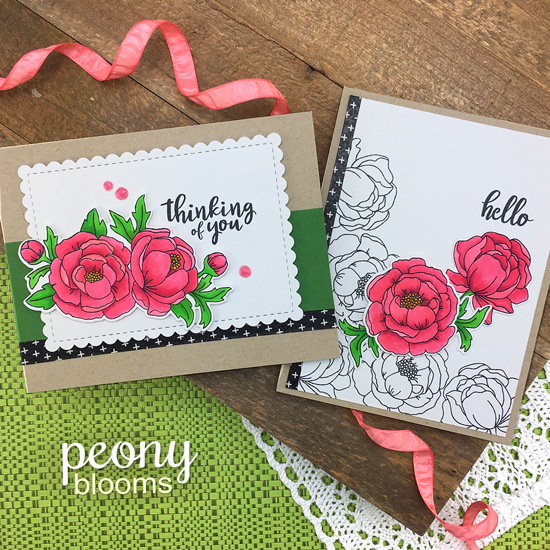 Floral Cards by Jennifer Jackson | Peony Blooms Stamp Set and Framework Die set by Newton's Nook Designs #newtonsnook #handmade