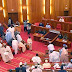 BREAKING: Thugs Invade Senate Plenary, Run Away With Mace