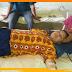 सुबह उठने के दौरान युवती को साँप ने काटा: बिछावन पर पहले से बैठा था विषधर