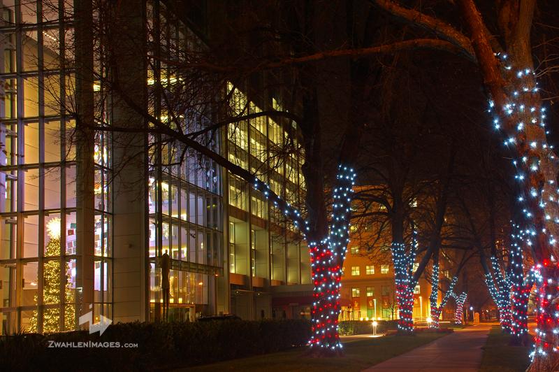 Christmas Lights Sacramento