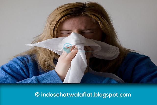 Cara Mengobati Flu Dengan Cepat Menggunakan Daging Ayam