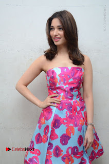 Actress Tamanna Latest Images in Floral Short Dress at Okkadochadu Movie Promotions  0125.JPG