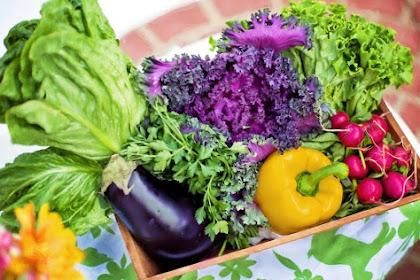 Cara Memasak Terbaik Agar Nutrisi Sayuran Tidak Hilang, Direbus atau Dikukus?