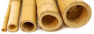 canne-di-bambù-per-arredo-tipologie